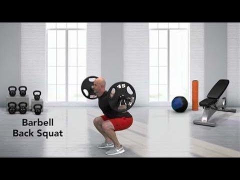 Nasm edge app workout: barbell back squat youtube