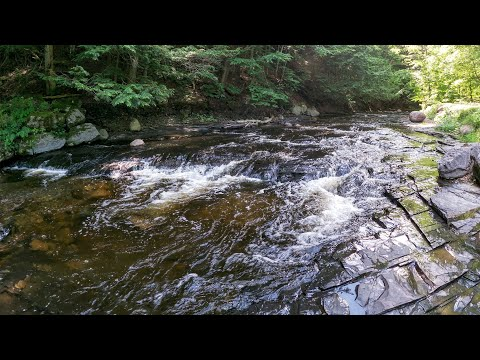 Whetstone Gulf, Creek & Falls, Hiking In A Northern New York State Park