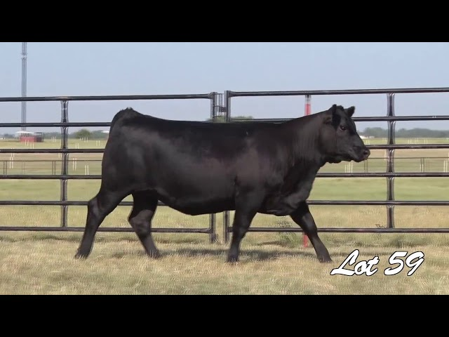 Pollard Farms Lot 59