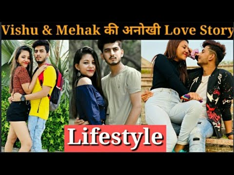 Download Mehak Gupta Biography, Vishu Setia Biography, Family, Love story, Age, Income, Instagram reels video