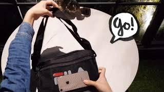 Juicy日雜包附錄購物袋 第一彈影片! 日雜包 日本雜誌 附錄