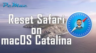 Reset safari browser to factory default settings on macOS Catalina