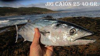 Aklbacora pescada con jig CAIÓN de 40 gr  Real sardine
