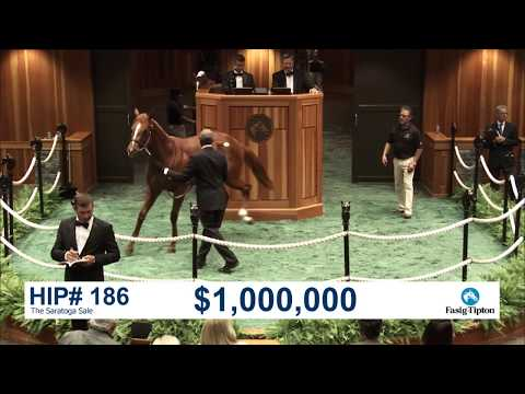 The Saratoga Sale (2017): Hip 186 c. ORB sells for $1,000,000