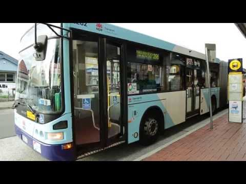 State Transit Bus Operator Recruitment