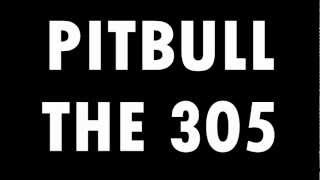 Pitbull - The 305