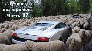 Лучшие фото  Приколы  Автомобили  Фото самое самое смешное в мире про машины  Класс! Часть 17