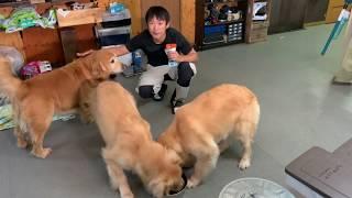 オヤツ動画→大乱闘に!