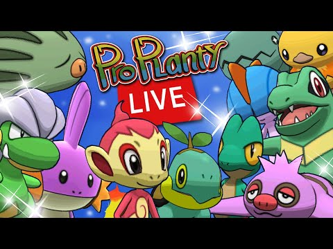 Download Pokemon Go December Community Day Live In Australia Day 2