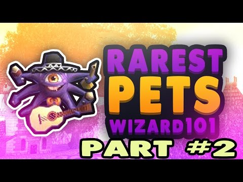 how to get a pet in wizard101 for free