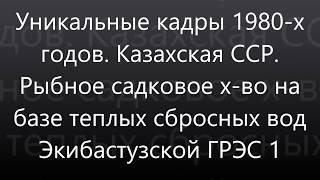 Рыбхоз при Экибастузской ГРЭС 1. 1980-е гг, Казахская ССР