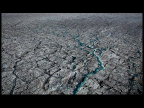 Why Greenland's sheet ice is turning black