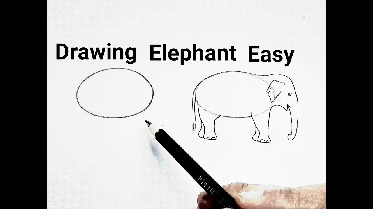 How To Draw An Elephant Drawing Easy Step By Step Basic Animals Drawing For Beginners Tutorial Youtube