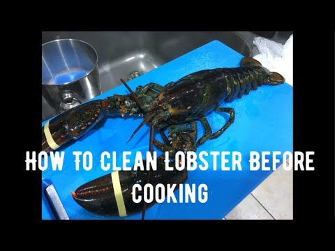 How To Clean Lobster Before Cooking