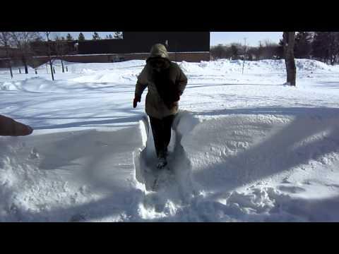 Palatine Illinois Blizzard 2011 = part 2