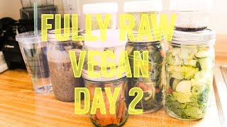 RAW VEGAN CHALLENGE DAY 2 | MEAL PREP