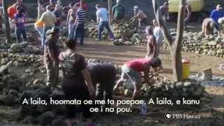 PBS Hawaii - HIKI NŌ Episode 422 | Ke Kula Niihau O Kekaha | NTBG Hale Project