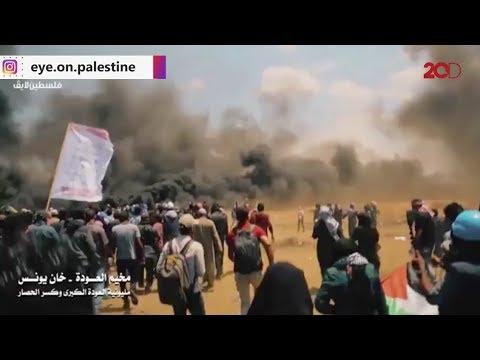 Kebrutalan Militer Israel Di Jalur Gaza