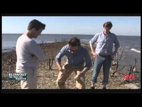 Blowout: The Gulf Oil Disaster (2015)