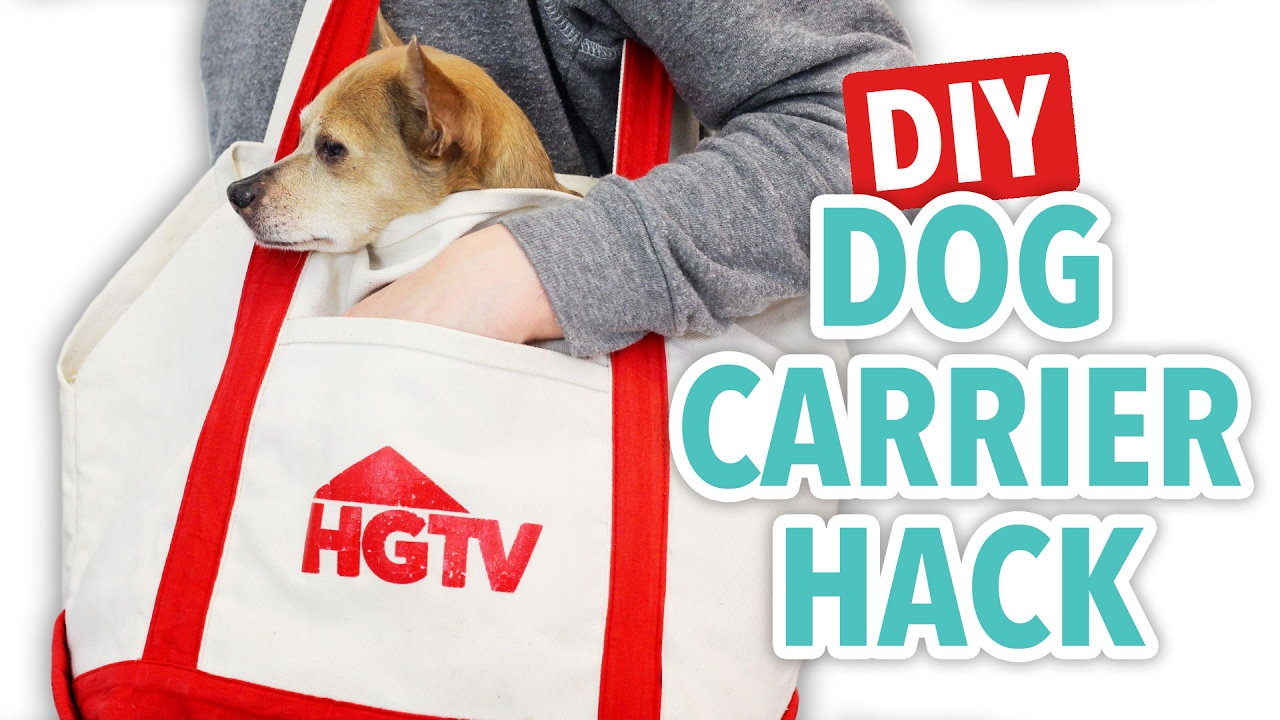 Diy Dog Carrier Hack Hgtv Handmade Youtube