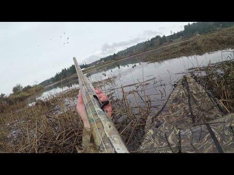 Kayak Duck Hunt