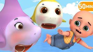 Baby Shark Rescue, Do The Baby Dance | jungu kids nursery rhymes & Baby songs