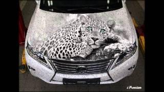 аэрография на авто фото, airbrush on cars photo,