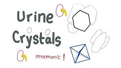 Urine Crystals with a mnemonic