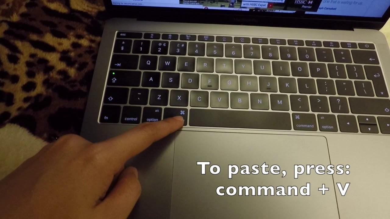how to copy paste on a mac laptop