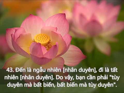 66 Lời Kinh Phật Thật Hay