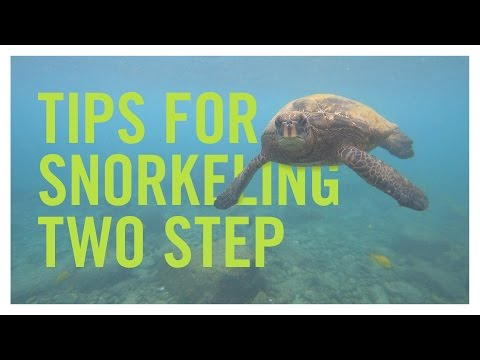 Tips for Snorkeling Two Step on the Big Island of Hawaii