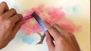 粉彩樱花习作_SoftPastel Sakura