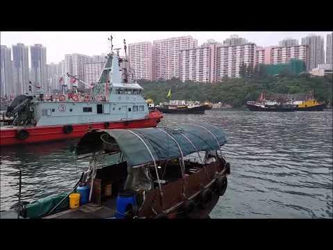 Hong Kong Fish Markets