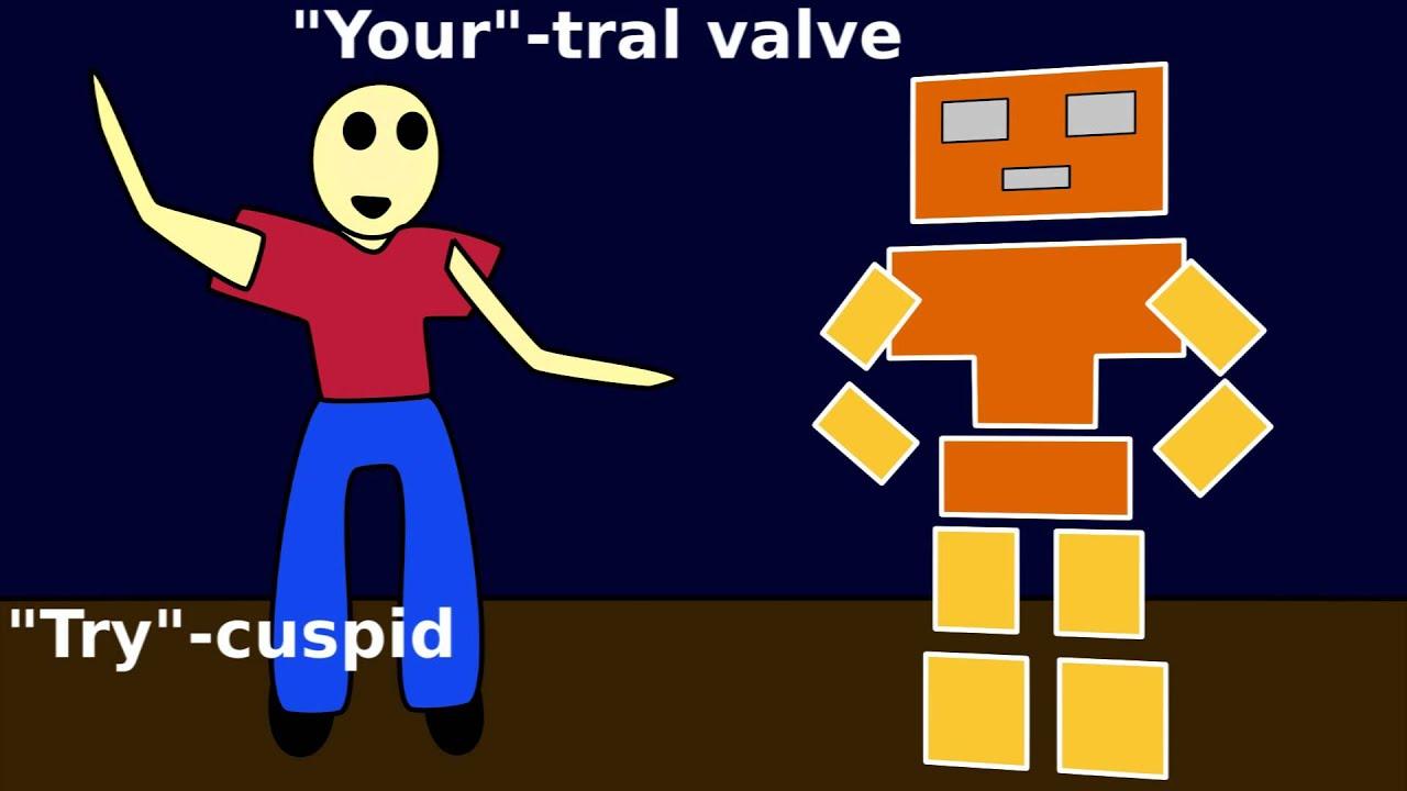 Mitral Tricuspid Heart Valve: Funny Anatomy Joke - YouTube