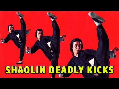 Wu Tang Collection - Shaolin Deadly Kicks