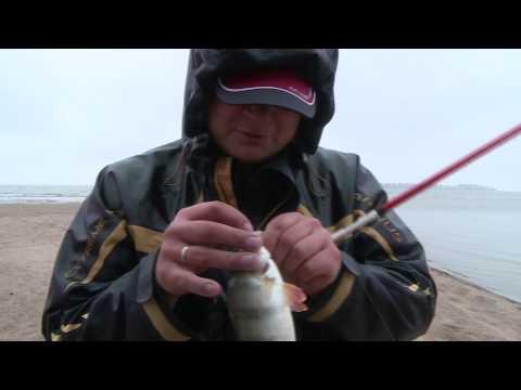 каролинская оснастка для ловли форели