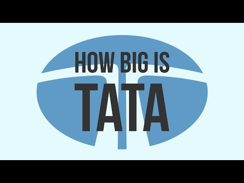 How Big Is TATA [HINDI - हिंदी]
