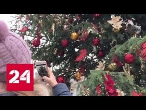 В Москве перед Новым годом растаял весь снег - Россия 24