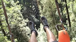 Zip Lining at Otway Fly Treetop Adventures - Otway Ranges - Victoria Australia - Great Ocean Road