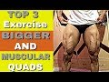 Top Exercise For Bigger And Muscular Quads| Rubal Dhankar |