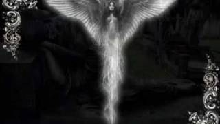 For My Fallen Angel(My Dying Bride)