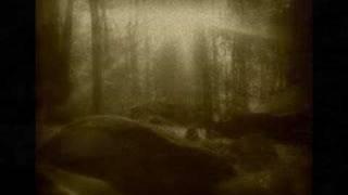 Schandmaul ~ Waldmär
