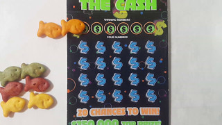 win what the f 5 20x the cash texas lottery scratch off ticket