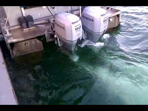 Twin Honda 4 Stroke 90 Outboards Youtube