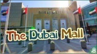 DUBAI MALL   Travel with Feroz