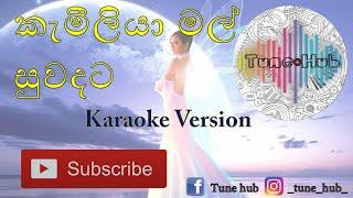 camilia-mal-suwadata-cinderella-karaoke-version