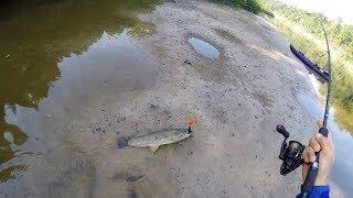 AS VEZES A QUANTIDADE DE TRAÍRA PASSA DOS LIMITES! Pescaria.