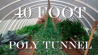 DIY 40 Foot Hoop House