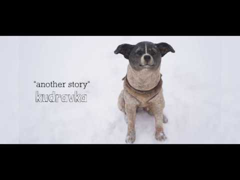 Another story, Laika dog
