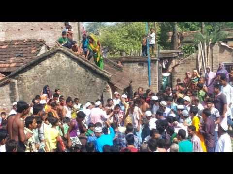 Bharatpur murshidabad bakra ied 2015 india kolkata